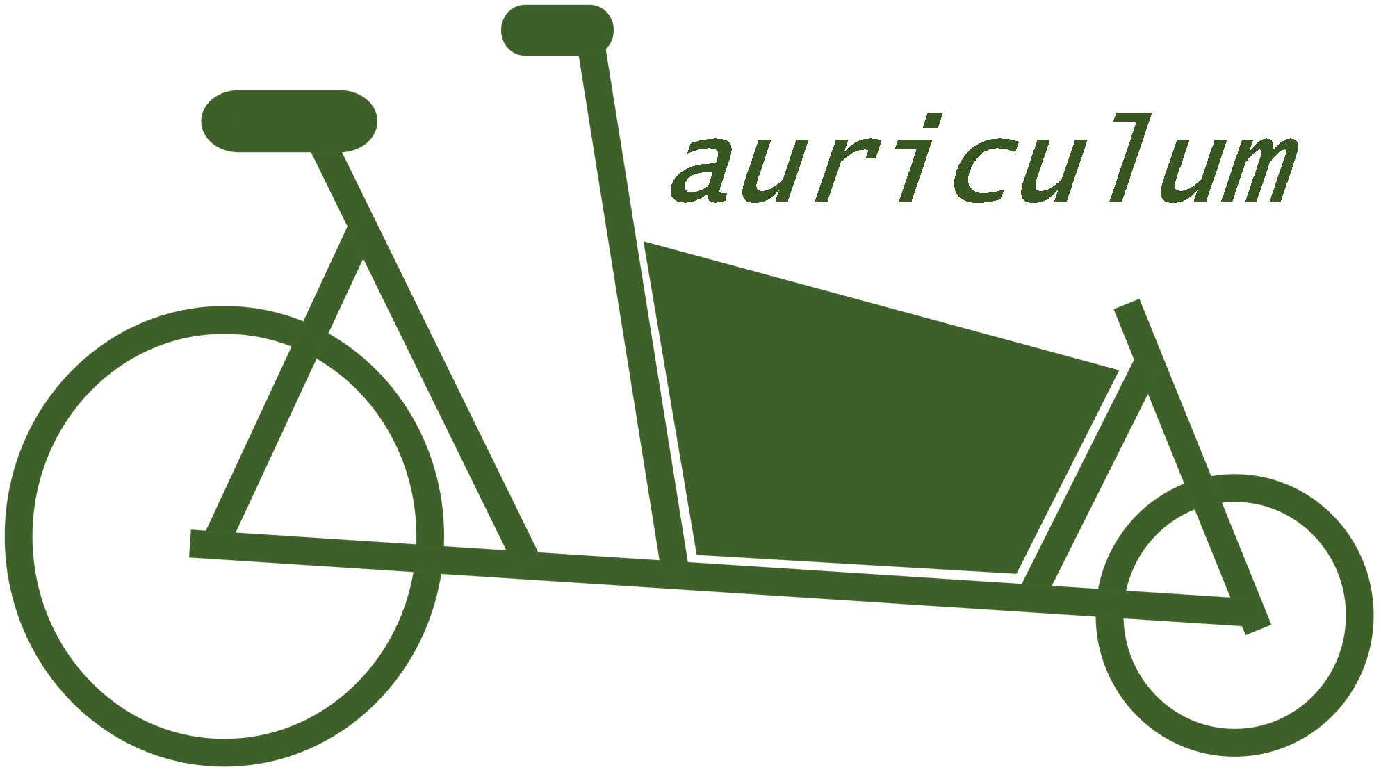 Auriculum klein.jpg